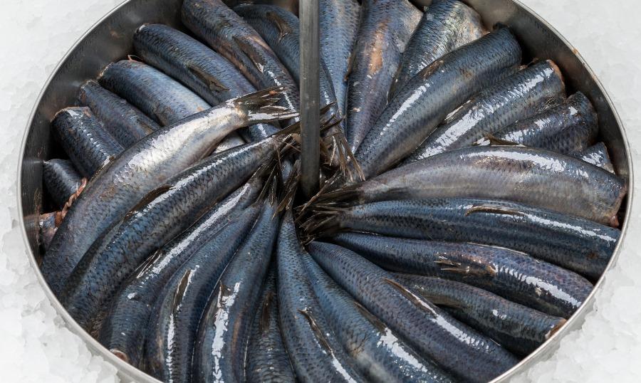 Бочкова солона риба