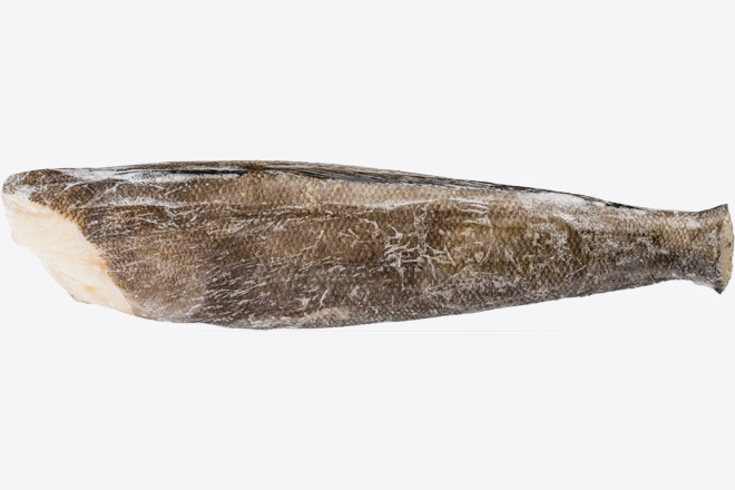 Іклач (сібас) патагонський  тушка «Chilean Seabass