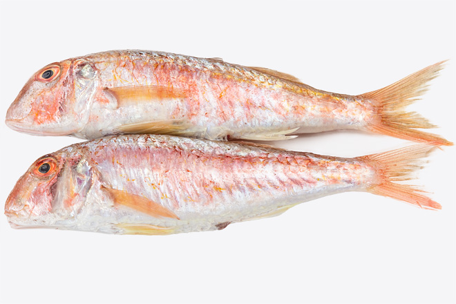 Photo Red mullet, chilled, Greece
