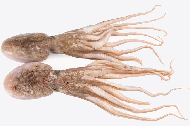 Фото Восьминіг Baby цiлий мускусний «Baby Octopus» охолоджений, Греція