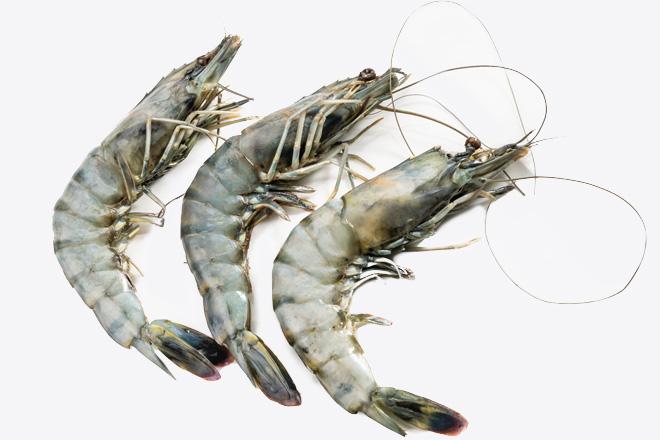 Креветка тигрова «Tiger shrimp» дефр. ваг.