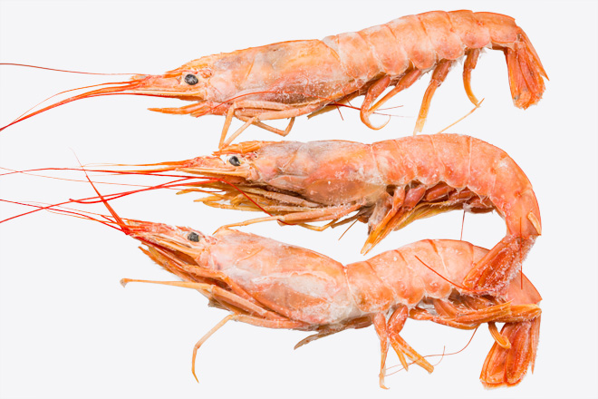 Фото Креветка «Argentinean Shrimps» Аргентина L2