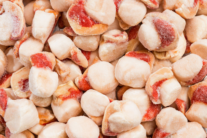Photo Scallop meat