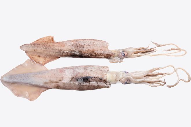 Кальмар тушка «Squid» дефр. ваг ІСПАНІЯ