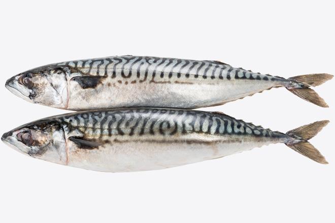 Скумбрія Норвегія «Mackerel» ваг.